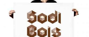 logo de sodi bois