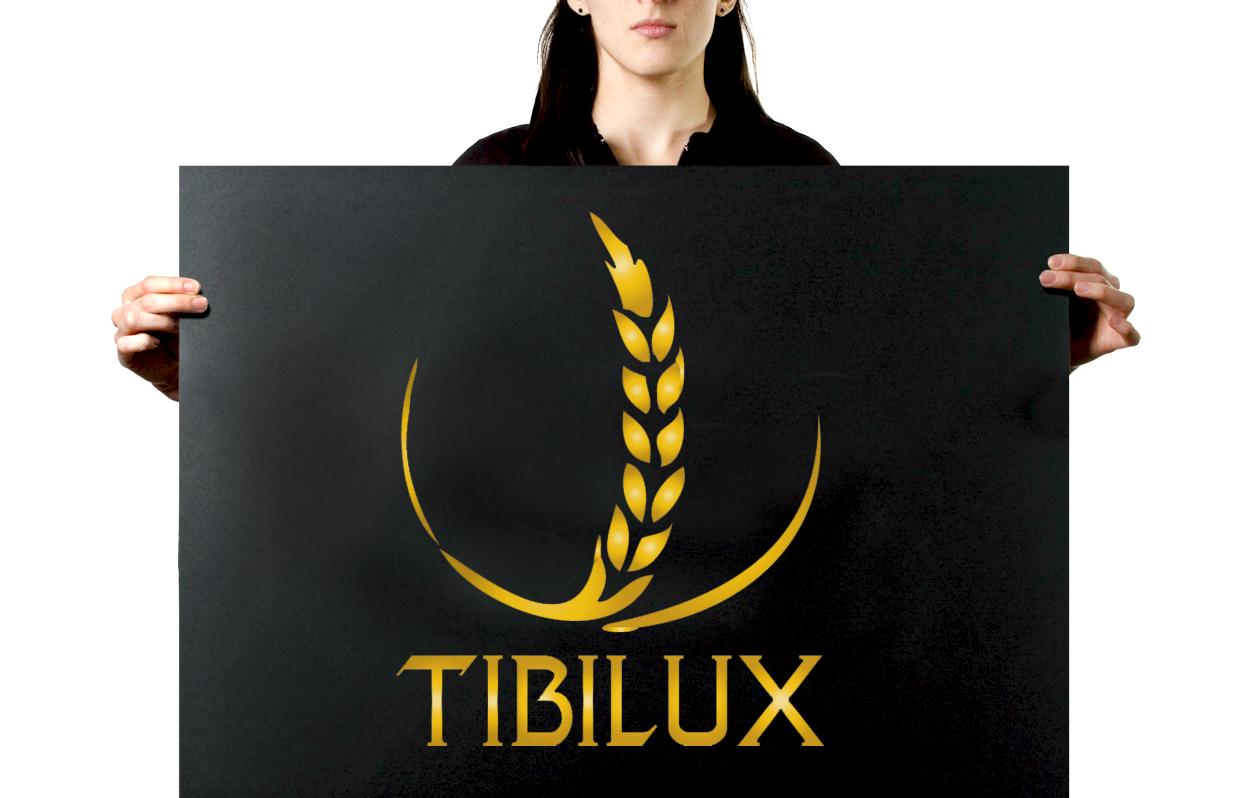 logo de tibilux